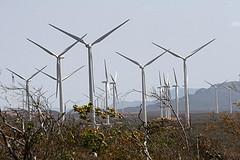Tensión ante el nuevo marco regulatorio de la eólica