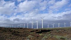 Pérdidas millonarias para el sector de las renovables
