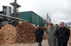 Murcia se lanza a la biomasa