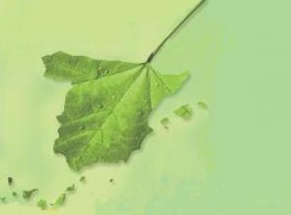 España reduce su impacto medioambiental